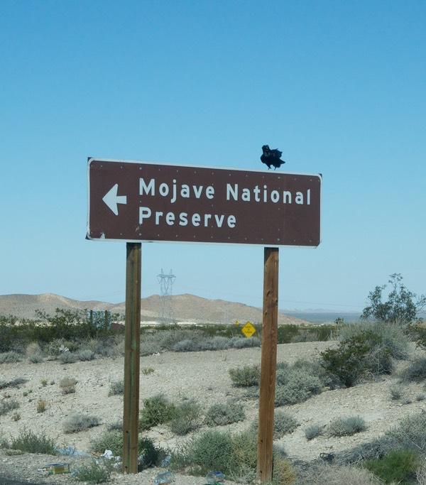 Sign met Mojave National Preserve