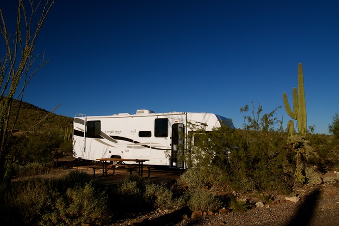 Op de campground bij Organ pipe NM
