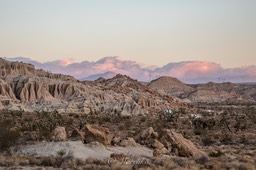 red-rock-mojave-4